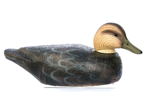 Series 72 Black Duck