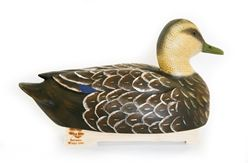 Wooden Black Duck